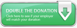 PIHN Double the Donation Page